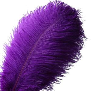 Steampunk Straussvogel-Feder lila
